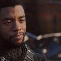 Black Panther pic 12