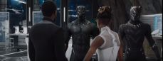 Black Panther pic 8